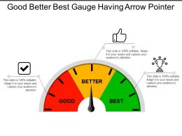 Good Better Best Gauge Having Arrow Pointer