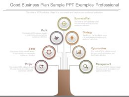 Good Business Plan Sample Ppt Examples Professional