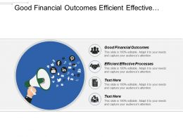 Good Financial Outcomes Efficient Effective Processes Build Capabilities