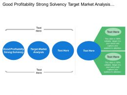 Good Profitability Strong Solvency Target Market Analysis Domestic Competition