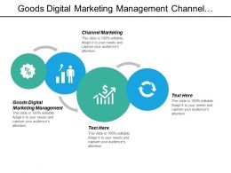 Goods Digital Marketing Management Channel Marketing Acquisition Strategy Plan Cpb