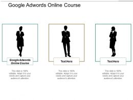 Google Adwords Online Course Ppt Powerpoint Presentation Portfolio Files Cpb