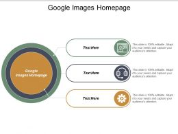 Google Images Homepage Ppt Powerpoint Presentation File Rules Cpb