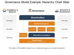 Governance Model Example Hierarchy Chart Slide Ppt Examples