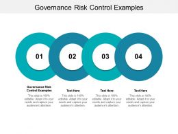 Governance Risk Control Examples Ppt Powerpoint Presentation Icon Outline Cpb