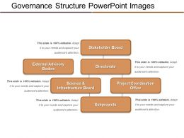 Governance Structure Powerpoint Images