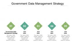 Government Data Management Strategy Ppt Powerpoint Graphics Cpb