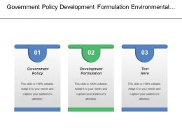 Government Policy Development Formulation Environmental Scanning Environmental Monitoring
