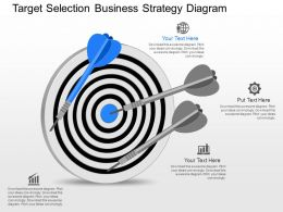 gp Target Selection Business Strategy Diagram Powerpoint Template