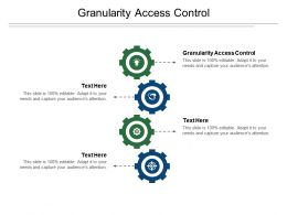 Granularity Access Control Ppt Powerpoint Presentation Pictures Visuals Cpb