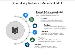 Granularity Reference Access Control Ppt Powerpoint Presentation Icon Show Cpb