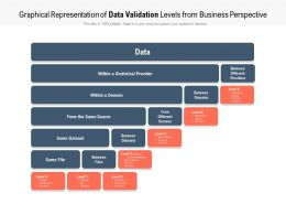 Graphical Representation Of Data Validation Levels From Business Perspective