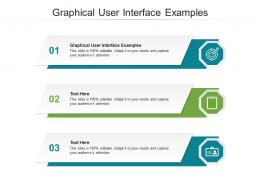 Graphical User Interface Examples Ppt Powerpoint Presentation Summary Format Cpb