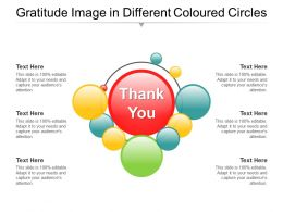 Gratitude Image In Different Coloured Circles