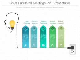 Great Facilitated Meetings Ppt Presentation