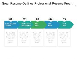 Great Resume Outlines Professional Resume Free Resume Layout Cpb