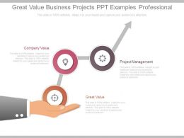 Great Value Business Projects Ppt Examples Professional
