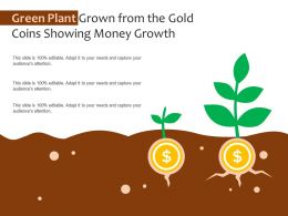 Green Plant Grown From The Gold Coins Showing Money Growth
