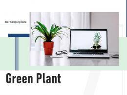 Green Plant Investment Ceramic Workstation Screen Computer Monitor