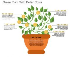 Green Plant With Dollar Coins Flat Powerpoint Design