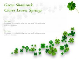 Green Shamrock Clover Leaves Springs