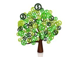 Green Tree With Leaves Of Dollar Symbol Stock Photo