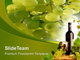 Green Vineyards Fresh Fruits PowerPoint Templates PPT Themes And Graphics 0513