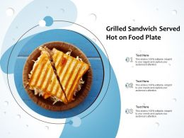 Grilled Sandwich Served Hot On Food Plate