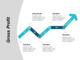 Gross Profit Ppt Powerpoint Presentation Slides Skills Cpb
