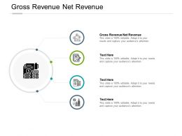Gross Revenue Net Revenue Ppt Powerpoint Presentation Pictures Format Cpb
