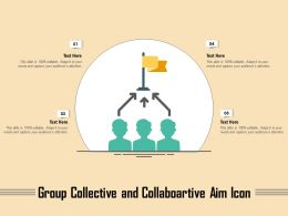 Group Collective And Collaboartive Aim Icon