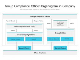 Group Compliance Officer Organogram In Company