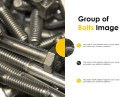 Group Of Bolts Image