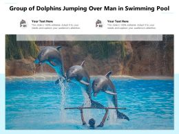 Group Of Dolphins Jumping Over Man In Swimming Pool