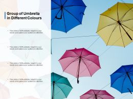 Group Of Umbrella In Different Colours