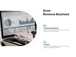Grow Revenue Business Ppt Powerpoint Presentation Slides Gridlines Cpb
