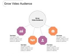 Grow Video Audience Ppt Powerpoint Presentation Summary Graphics Design Cpb
