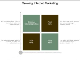 Growing Internet Marketing Ppt Powerpoint Presentation Gallery Information Cpb