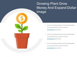 Growing Plant Grow Money And Expand Dollar Image