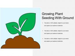 Growing Plant Seeding With Ground