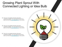 Growing Plant Sprout With Connected Lighting Or Idea Bulb