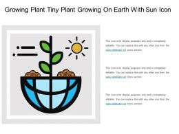 Growing Plant Tiny Plant Growing On Earth With Sun Icon