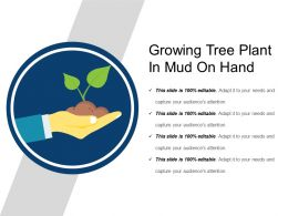 Growing Tree Plant In Mud On Hand