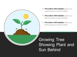 Growing Tree Showing Plant And Sun Behind