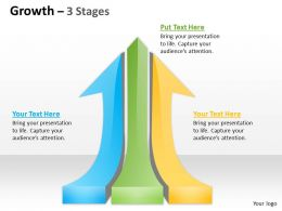 Growth 3 Stages