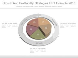 Growth And Profitability Strategies Ppt Example 2015