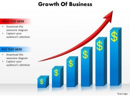 Growth Of Business