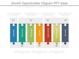 Growth Opportunities Diagram Ppt Ideas