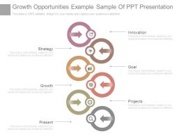 Growth Opportunities Example Sample Of Ppt Presentation