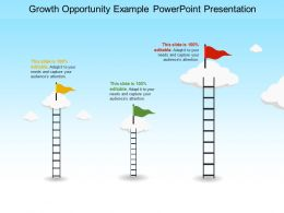 Growth Opportunity Example Powerpoint Presentation